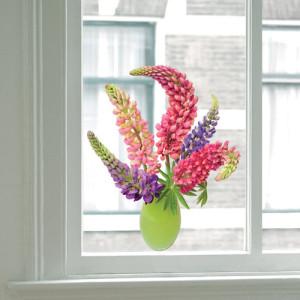 Option for Window decoration
